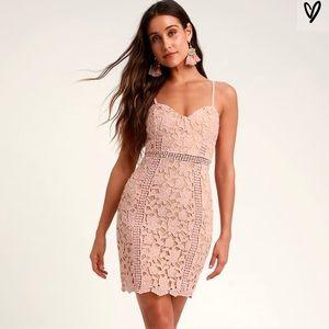 Lulus Blush Lace Dress *never worn*